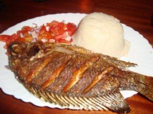 Fish + ugali
